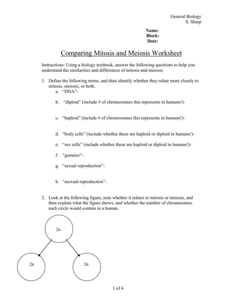 Comparing Mitosis And Meiosis Worksheet