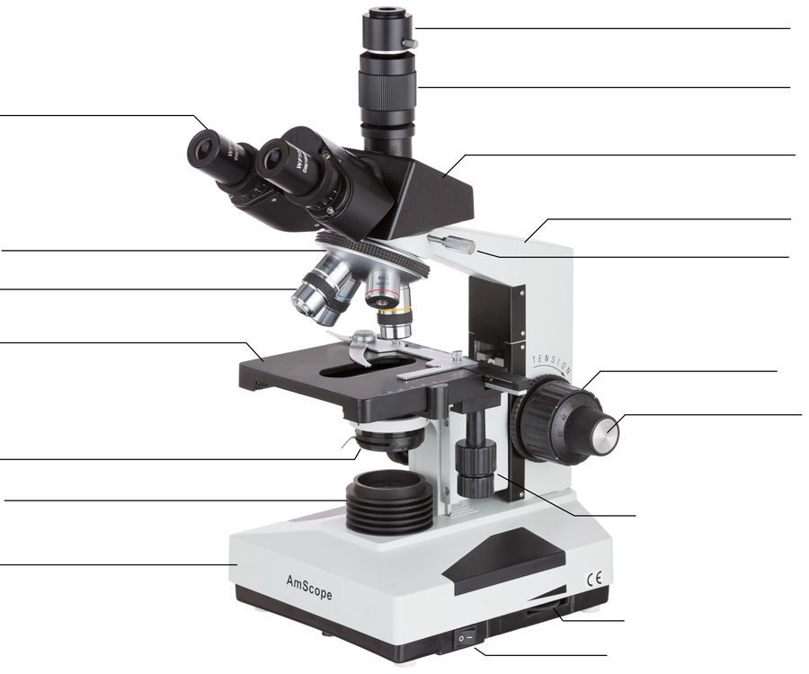 Compound Microscope Lab   Microscopic Science For Kids