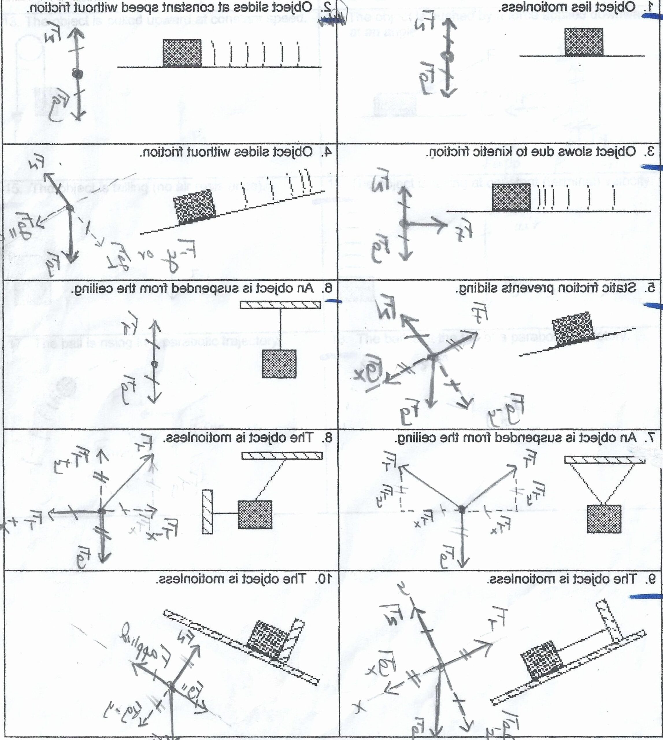 Dna Base Pairing Worksheet  Chessmuseum Template Library