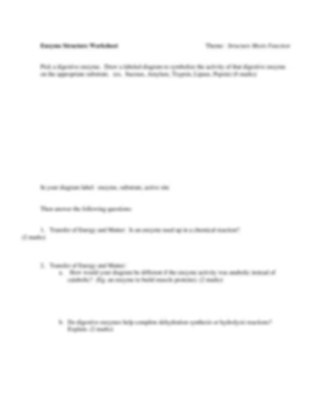Enzymegraphingworksheetpdf  Enzyme Graphing Practice