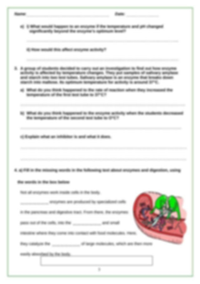 Enzymes Review Packet   Name Date Enzymes Review