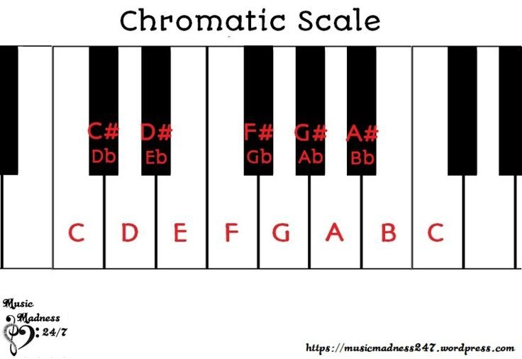 Intro To Music Theory Part  Chromatic Scale Half Steps