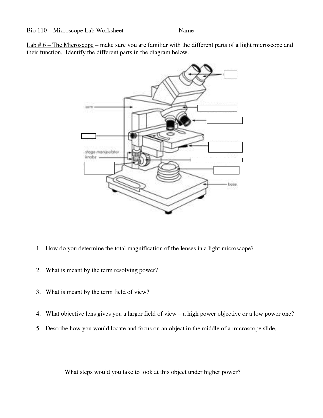 Microscope Matching Worksheet  Printable Worksheets And