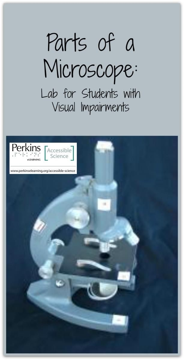 Parts Of A Microscope  Lab  Visually Impaired Science