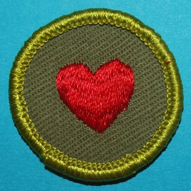 Personal Fitness Type F Merit Badge  Boy Scouts