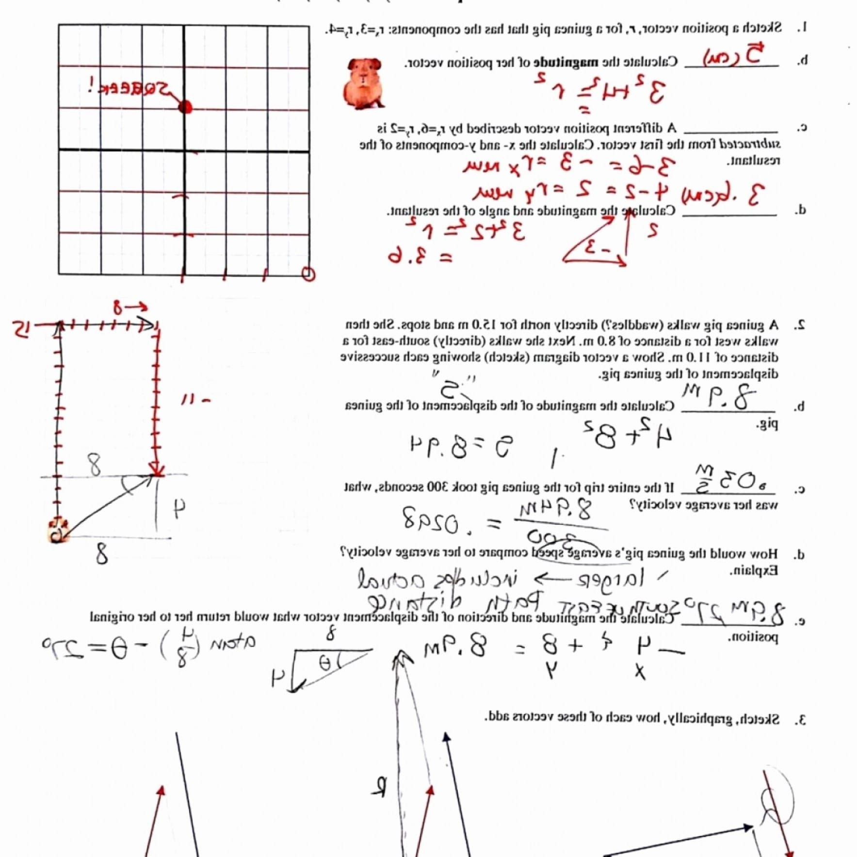 Vectors Worksheet With Answers — Dbexcel