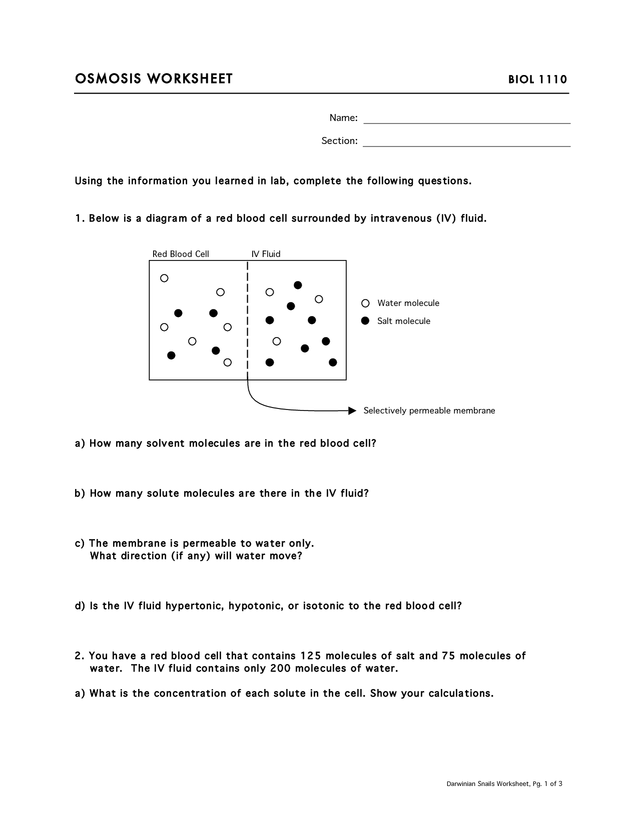 Worksheet Osmosis And Tonicity  Printable Worksheets And